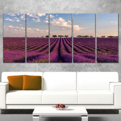 Designart Shiny Lavender Field in Provence Landscape CanvasWall Art - 5 Panels