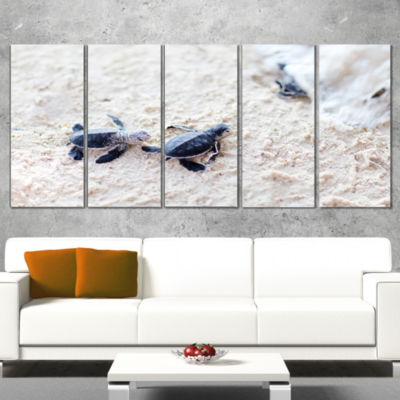 Designart Baby Green Turtles On Sand Oversized Animal Wrapped Wall Art - 5 Panels