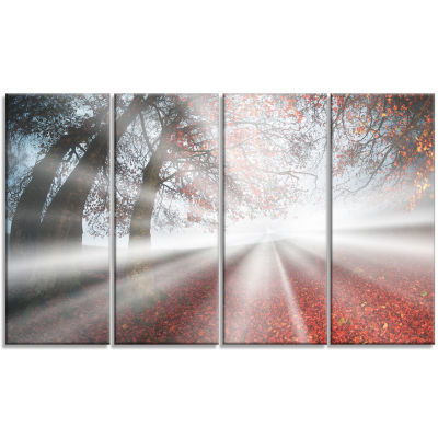 Silver Sun Rays To Foggy Forest Landscape Photo Canvas Art Print - 4 Panels