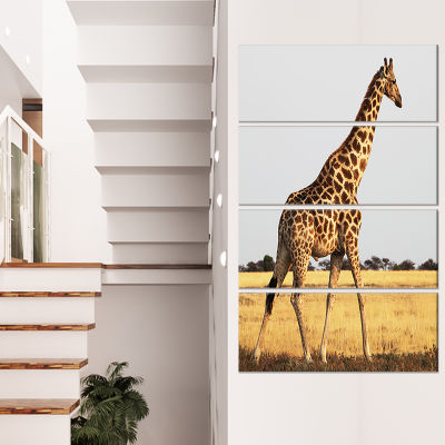 Designart Single Giraffe in Africa Walking Extra Large African Canvas Art Print - 4 Panels