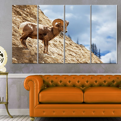 Designart Single Goat on Rocky Mountain Animal Canvas Art Print - 4 Panels