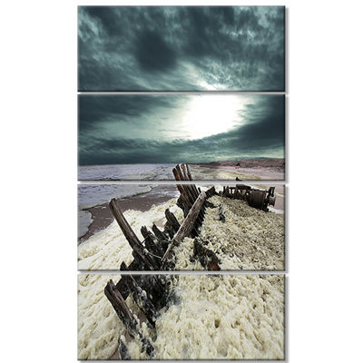 Designart Skeleton Coast National Park Landscape Canvas ArtPrint - 4 Panels