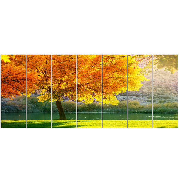 Designart Beautiful Autumn Season in Forest ExtraLarge Landscape Canvas Art 7 Panels
