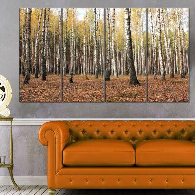 Designart Beautiful Birch Forest Photography Modern Forest Canvas Art - 4 Panels