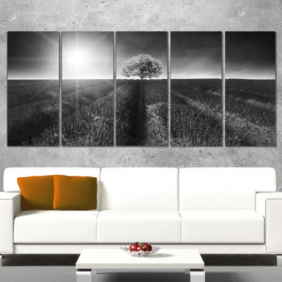 Designart Beautiful Black White Lavender Field Extra Large Landscape Wrapped Canvas Art - 5 Panels