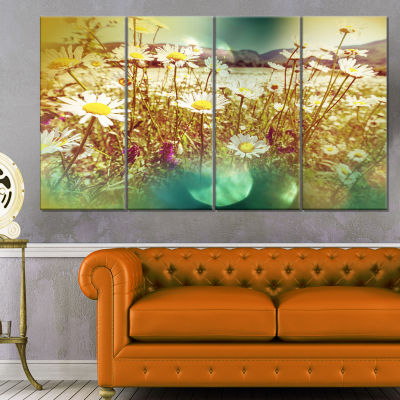 Designart Beautiful Blossom Chamomile Flowers Floral Canvas Art Print - 4 Panels