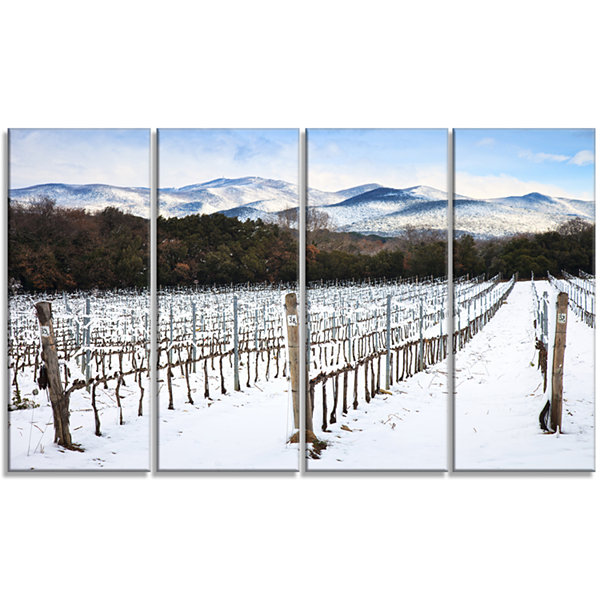 Designart Snow Covered Vineyard Rows Italy Extra Large Landscape Canvas Art - 4 Panels