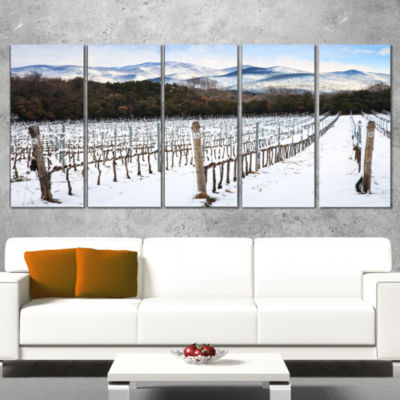 Snow Covered Vineyard Rows Italy Extra Large Landscape Wrapped Art - 5 Panels