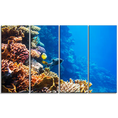 Designart Beautiful Coral Fish of Red Sea SeashoreCanvas Art Print - 4 Panels