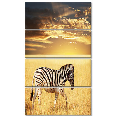 Solitary Zebra Walking in Grassland African CanvasArt Print - 4 Panels