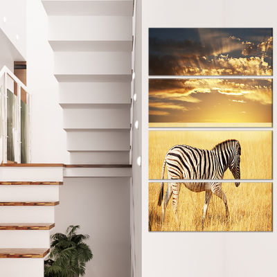 Designart Solitary Zebra Walking in Grassland African CanvasArt Print - 4 Panels
