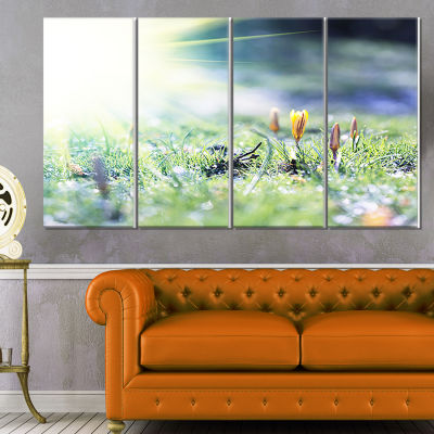 Designart Beautiful First Spring Flowers at DawnFloral Canvas Art Print - 4 Panels