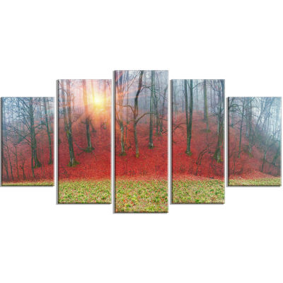 Spring Flowers with Snowdrops Landscape Photography Canvas Print - 5 Panels