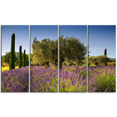Designart Beautiful Lavender and Olive Trees LargeFlower Canvas Wall Art - 4 Panels