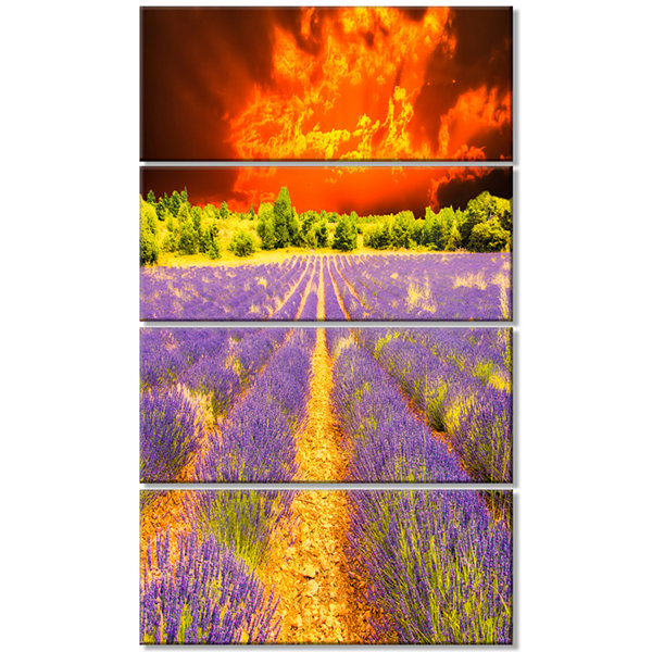 Designart Beautiful Lavender Field and Sunset Floral Canvas Art Print - 4 Panels