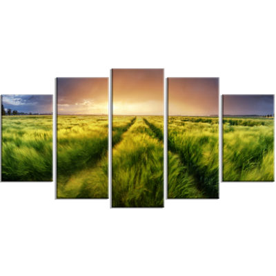 Designart Storm and Light on Meadow Landscape Artwork Wrapped - 5 Panels