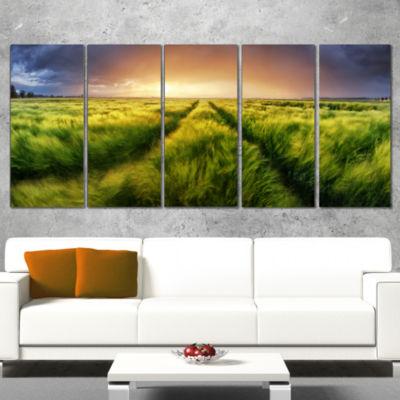 Designart Storm and Light on Meadow Landscape Artwork Canvas- 5 Panels