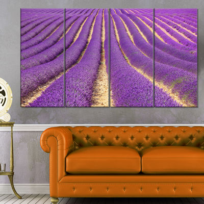 Designart Beautiful Pattern of Blooming LavenderLarge Flower Canvas Wall Art - 4 Panels