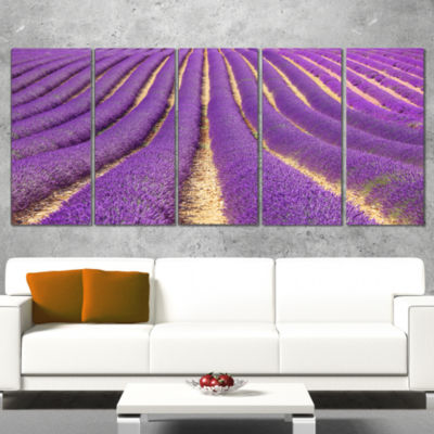 Designart Beautiful Pattern of Blooming LavenderLarge Flower Canvas Wall Art - 5 Panels