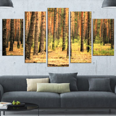 Designart Beautiful Pine Forest at Sunset ModernForest Canvas Art - 4 Panels