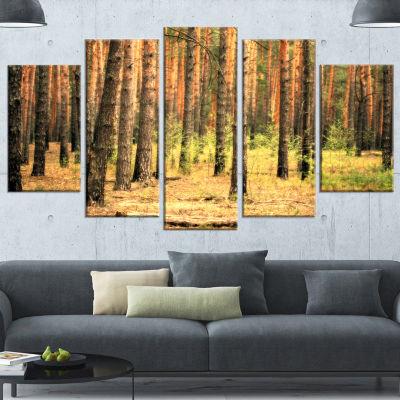 Designart Beautiful Pine Forest at Sunset ModernForest Canvas Art - 5 Panels