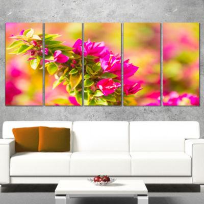 Designart Beautiful Pink Bougainvillea Flowers Floral Wrapped Canvas Art Print - 5 Panels