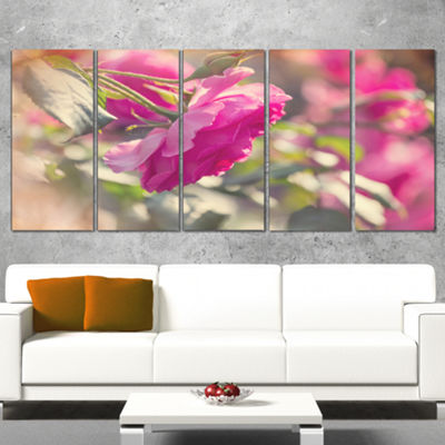 Designart Beautiful Pink Rose Flowers Floral Wrapped Canvas Art Print - 5 Panels