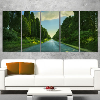 Straight Cypress Trees Boulevard Modern LandscapeWrapped Art - 5 Panels