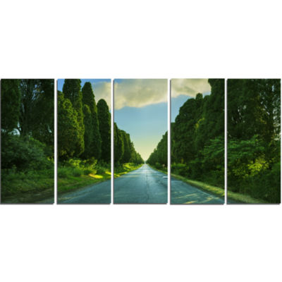 Straight Cypress Trees Boulevard Modern LandscapeCanvas Art - 5 Panels