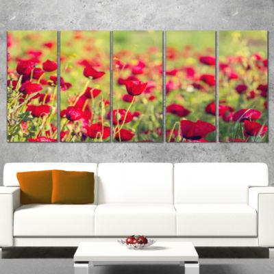 Designart Beautiful Poppy Flowers Background LargeFlower Canvas Art Print - 5 Panels