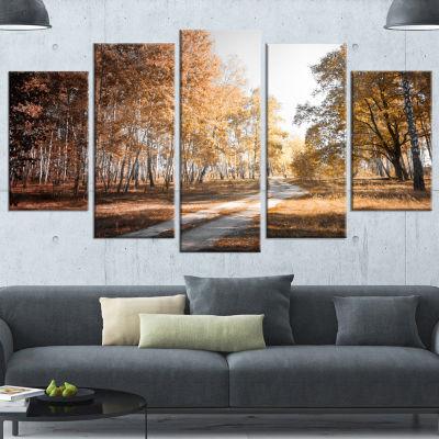 Designart Straight Road in Fall Birch Grove ModernForest Canvas Art - 4 Panels