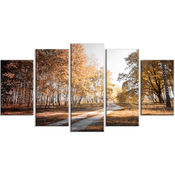 Designart Straight Road in Fall Birch Grove ModernForest Wrapped Art - 5 Panels
