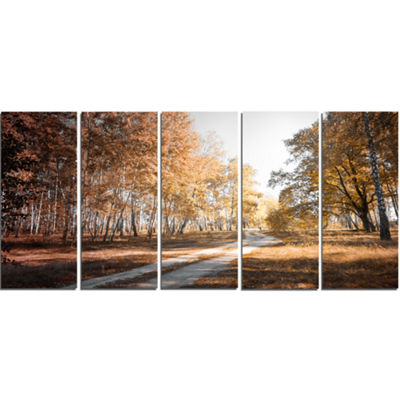 Designart Straight Road in Fall Birch Grove ModernForest Canvas Art - 5 Panels