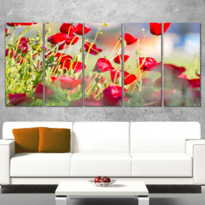 Designart Beautiful Red Poppy Flowers View FloralWrapped Canvas Art Print - 5 Panels