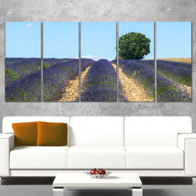 Designart Beautiful Rows of Lavender in France Landscape Wrapped Canvas Wall Art - 5 Panels