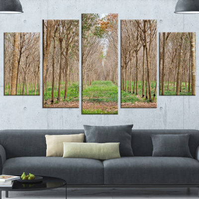 Designart Beautiful Rubber Plantation Photo ModernForest Wrapped Canvas Art - 5 Panels