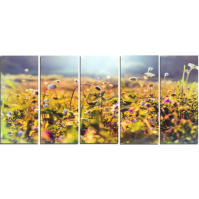 Summer Flowers on Sunny Day Floral Art Canvas Print - 5 Panels