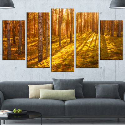 Designart Beautiful Sunrays in Thick Forest ModernForest Canvas Art - 5 Panels