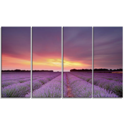 Designart Beautiful Sunset Over Lavender Rows Landscape Canvas Wall Art - 4 Panels