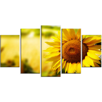 Designart Beautiful Tuscany Sunflower Floral Wrapped Canvas Art Print - 5 Panels