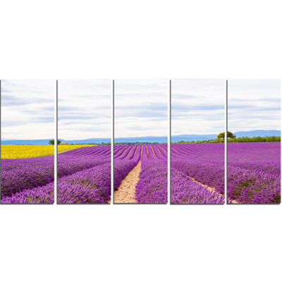 Designart Sunflower and Lavender Fields LandscapeCanvas Wall Art - 5 Panels