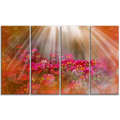 Designart Sunlight Over Small Red Flowers Large Floral Canvas Artwork - 4 Panels