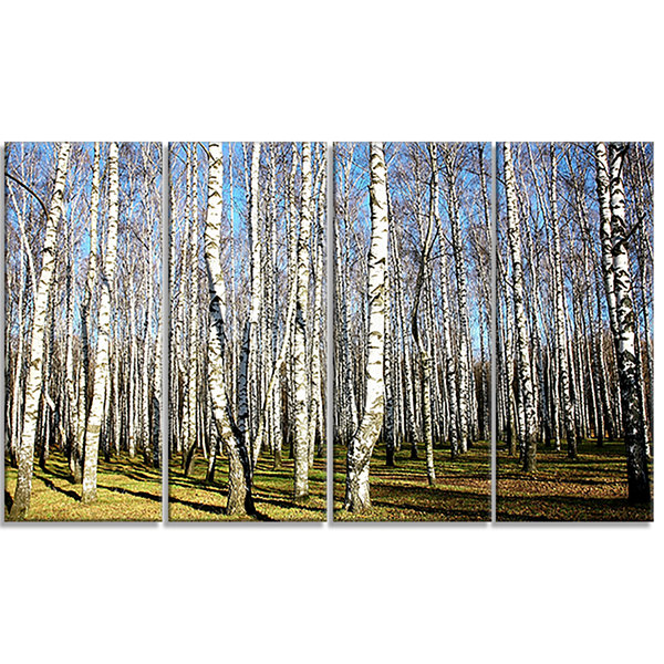 Designart Sunny Autumn Birch Grove Modern Forest Canvas Art- 4 Panels