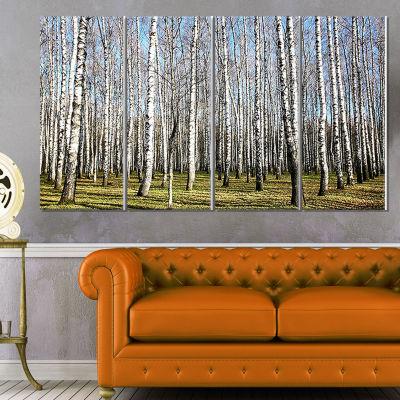 Designart Sunny November Day in Birch Grow ModernForest Canvas Art - 4 Panels