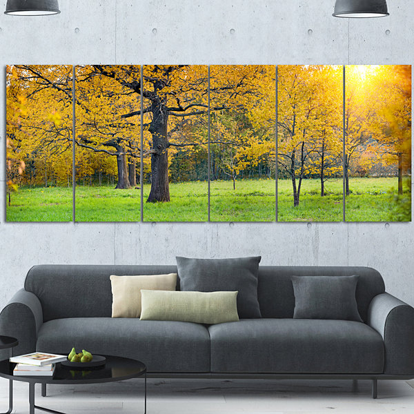 Designart Sunny Park with Oak Panorama Large Landscape Canvas Art 6 Panels