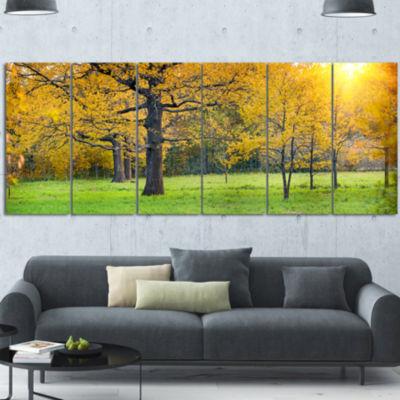Designart Sunny Park with Oak Panorama Large Landscape Canvas Art - 7 Panels