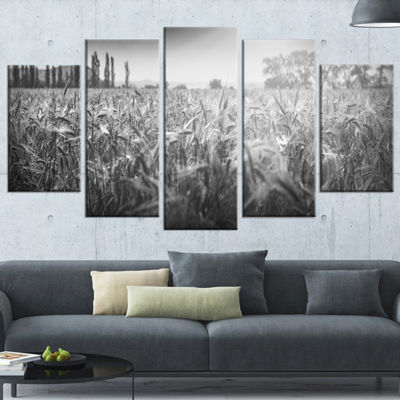 Designart Black and White Wheat Field Landscape Wrapped Canvas Art Print - 5 Panels