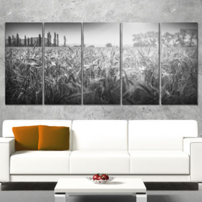 Designart Black and White Wheat Field Landscape Canvas Art Print - 5 Panels