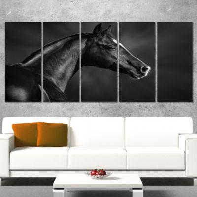 Designart Black Arabian Horse Portrait Animal Canvas Art Print - 4 Panels