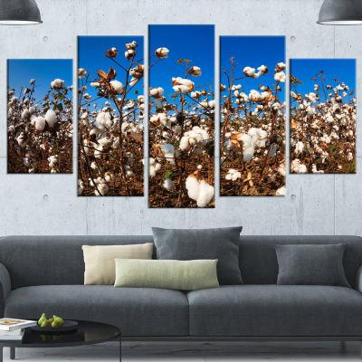 Designart Blooming Alabama Cotton Field Large Landscape Wrapped Canvas Art - 5 Panels
